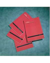 ACCOUNT BOOK COLLINS A60 DBL/ LEDGER